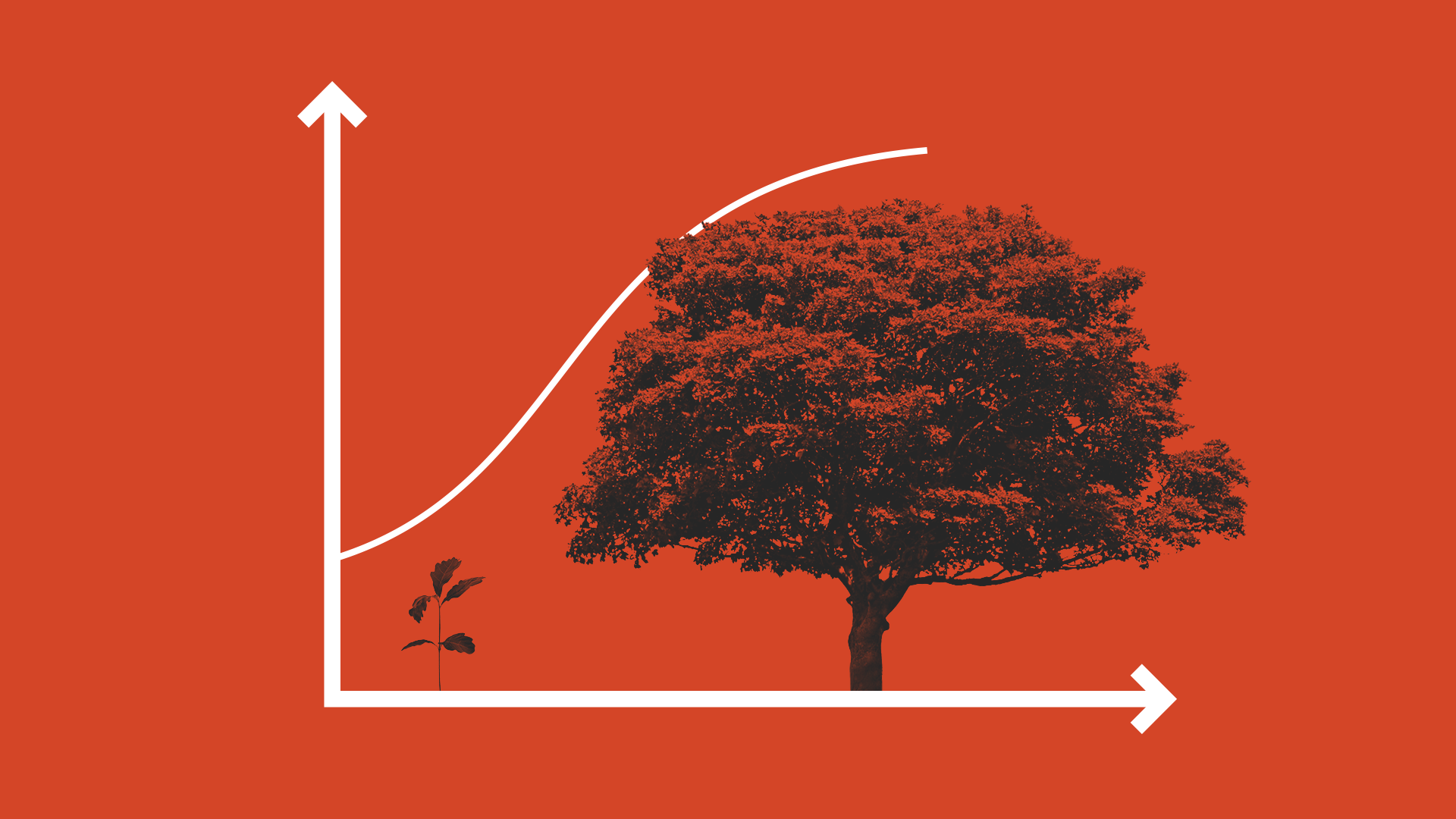 illustrated graph with a tree, symbolizing growth